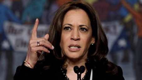 Kamala Harris Ending Us Presidential Bid The Business Standard